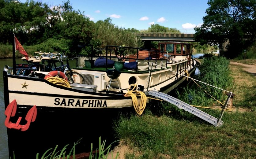 saraphina4